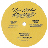 Kenny Knots - Black Iration / Rootsmala - Jah Is Watching You (New Exodus) 12""